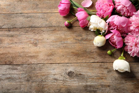Fragrant peonies on wooden table, top view with space for text. Beautiful spring flowers
