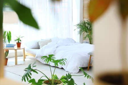 Bedroom interior with indoor plants. Trendy home decor