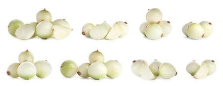 Set di cipolle crude su sfondo bianco