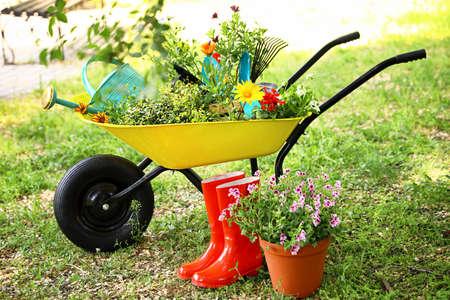 Carriola con attrezzi da giardinaggio e fiori sull'erba all'esterno Archivio Fotografico