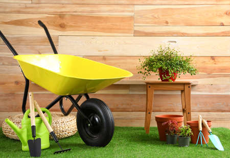 Wheelbarrow with gardening tools and plants near wooden wall