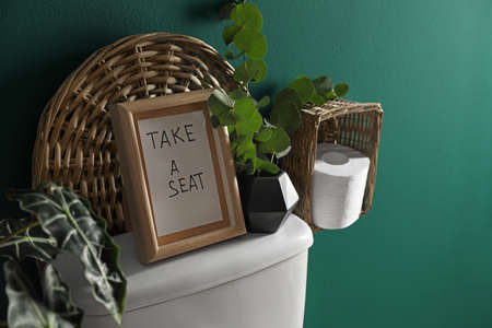Decor elements, paper rolls and toilet bowl near green wall, space for text. Bathroom interior