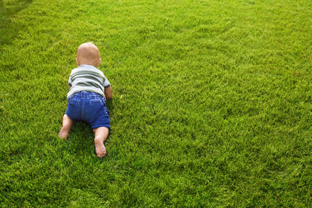 Adorable little baby crawling on green grass outdoors