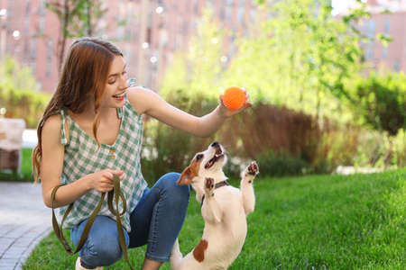 Young woman playing with adorable Jack Russell Terrier dog outdoors Фото со стока