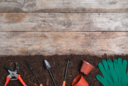 Flat lay composition with soil and gardening tools on wooden background, space for text Stock Photo