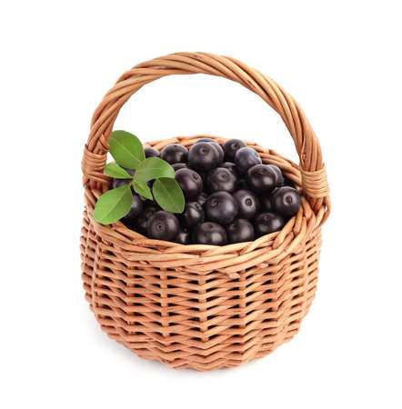 Wicker basket with fresh acai berries on white background