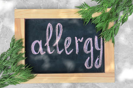 Ragweed (Ambrosia) and chalkboard with word ALLERGY on grey marble background, flat lay
