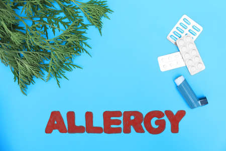 Ragweed (Ambrosia), word ALLERGY and medication on blue background, flat lay. Space for text