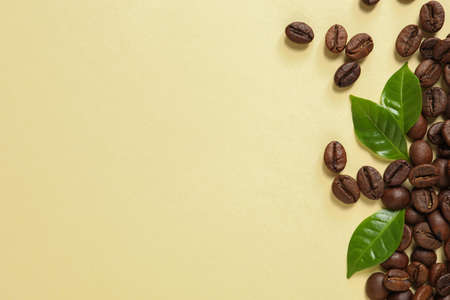 Fresh green coffee leaves and beans on light yellow background, flat lay. Space for text