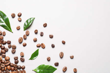 Fresh green coffee leaves and beans on light background, flat lay. Space for text