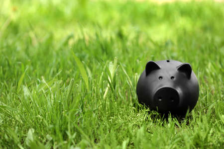 Black piggy bank in green grass outdoors. Space for text
