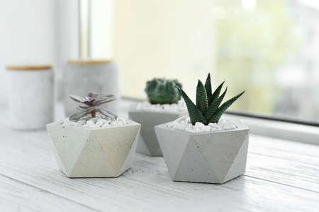 Beautiful succulent plants in stylish flowerpots on windowsill. Home decor