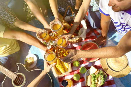 Friends having picnic on sunny day, closeup