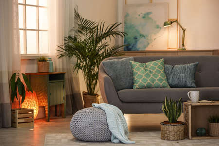 Living room interior with green houseplants and sofa