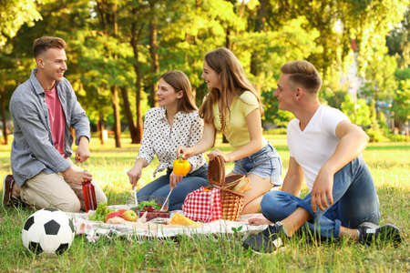 Young people enjoying picnic in park on summer day