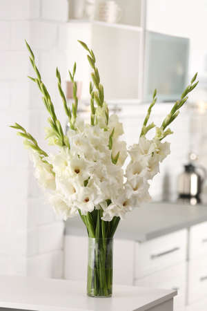 Vase with beautiful white gladiolus flowers on wooden table in kitchen