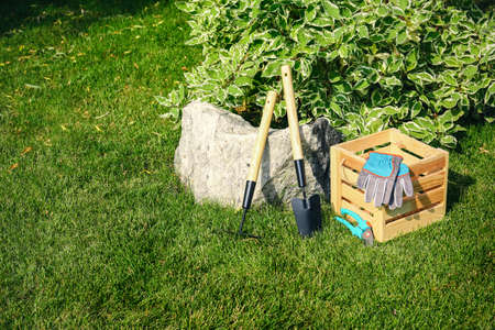 Set of gardening tools and wooden crate on green grass