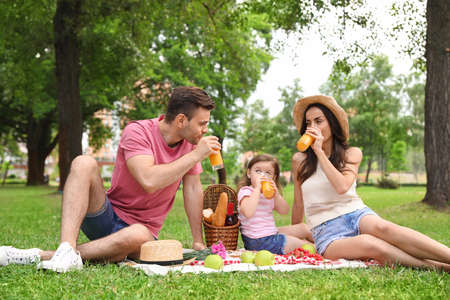 Happy family having picnic in park on summer day