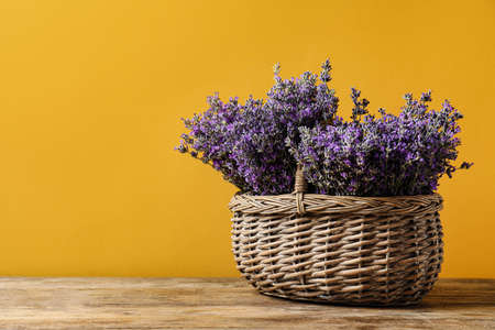Basket with fresh lavender flowers on wooden table against yellow background. Space for text