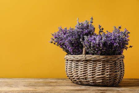 Korb mit frischen Lavendelblumen auf Holztisch vor gelbem Hintergrund. Platz für Text