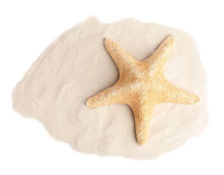 Pile of beach sand with beautiful starfish on white background, top view