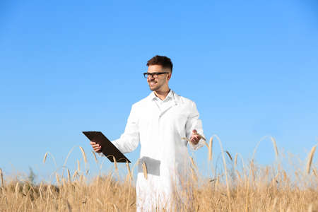 Agronomist with clipboard in wheat field. Cereal grain crop Zdjęcie Seryjne