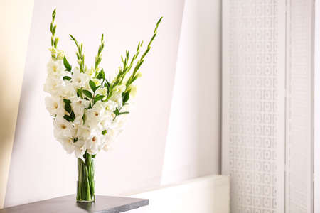 Vase with beautiful white gladiolus flowers on wooden table near color wall. Space for text