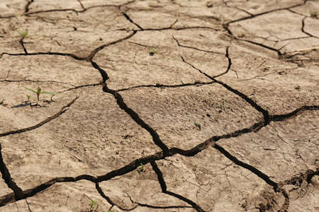 View of cracked ground surface on sunny day Stock Photo