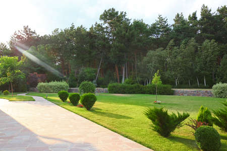 Picturesque landscape with beautiful green garden on sunny day