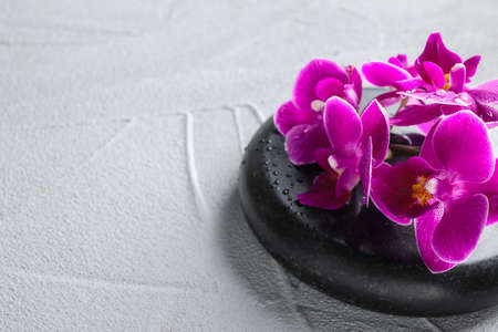Orchid with spa stone on light grey background. Space for text 写真素材