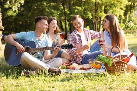 Młodzi ludzie korzystający z pikniku w parku w letni dzień Zdjęcie Seryjne