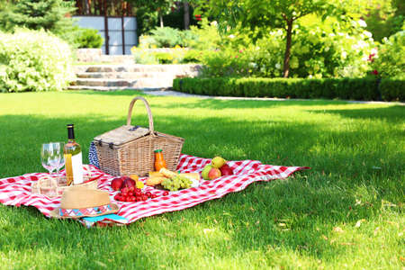 Picnic basket with products and bottle of wine on checkered blanket in garden. Space for text Imagens