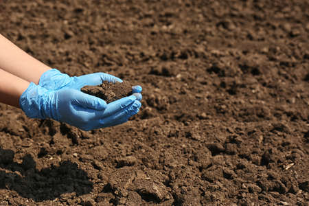 Woman holding pile of soil outdoors, closeup. Space for text