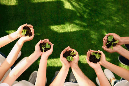 Group of volunteers holding soil with sprouts in hands outdoors, top view. Space for text