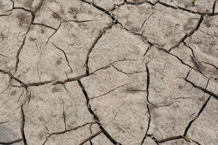 Cracked ground surface as background, top view