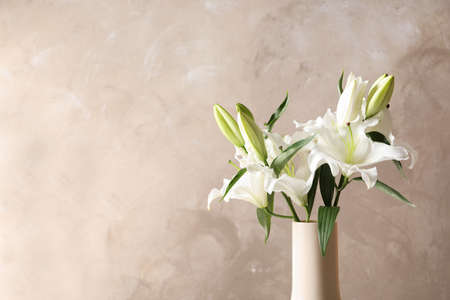 Vase with beautiful lilies on light brown background, space for text Stok Fotoğraf