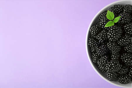 Bowl of tasty ripe blackberries and leaves on purple background, top view with space for text