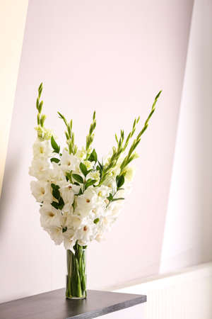 Vase with beautiful white gladiolus flowers on wooden table near color wall