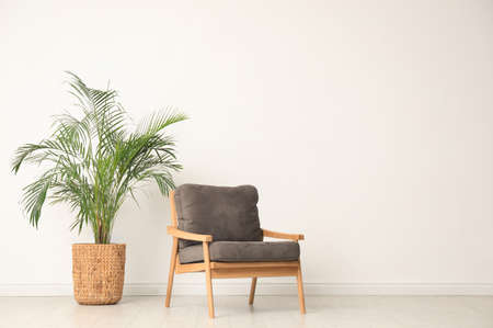 Stylish room interior with wooden armchair and houseplant near light wall. Space for text