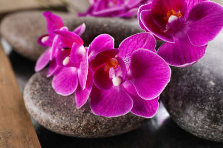 Spa stones and orchid flowers on tray, closeup