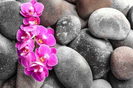Spa stones and orchid flowers as background, top view