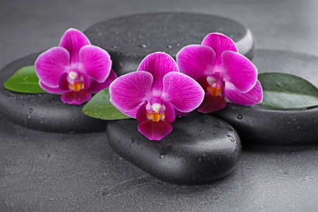 Wet spa stones and orchid flowers on grey background