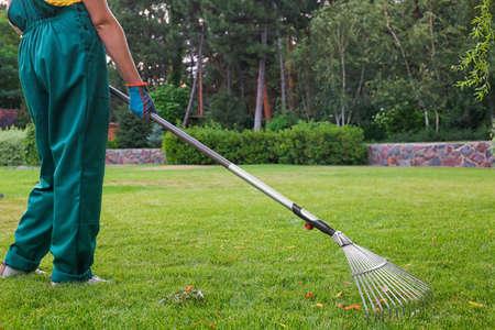 Woman raking green lawn at backyard. Home gardening