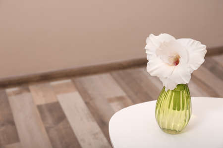 Vase with beautiful gladiolus flower on wooden table indoors Stock fotó