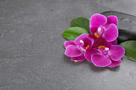 Spa stones and orchid flowers on grey background. Space for text