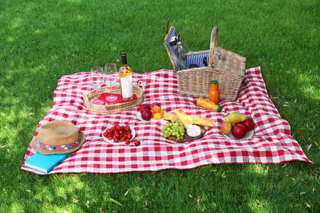 Picnic basket with products and bottle of wine on checkered blanket in garden Stock Photo