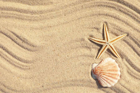 Starfish and seashell on beach sand with wave pattern, top view. Space for text