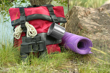 Backpack and camping equipment on grass near tree in wilderness Stockfoto