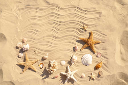 Starfishes and seashells on beach sand with wave pattern, flat lay. Space for text