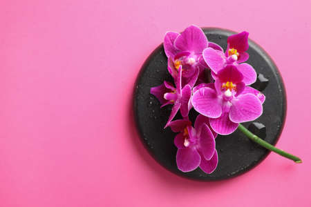 Spa stone and beautiful orchid flowers on pink background, top view. Space for text Reklamní fotografie